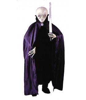 Costum Extraterestru